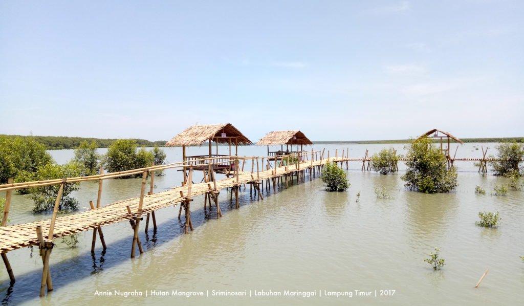 5 Tempat Wisata di Sukadana Kabupaten Lampung Timur 2