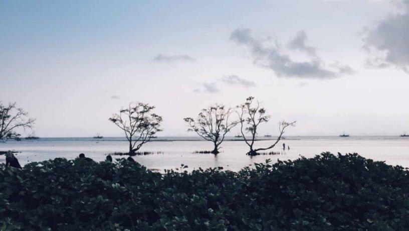 pantai sebalang Lampung