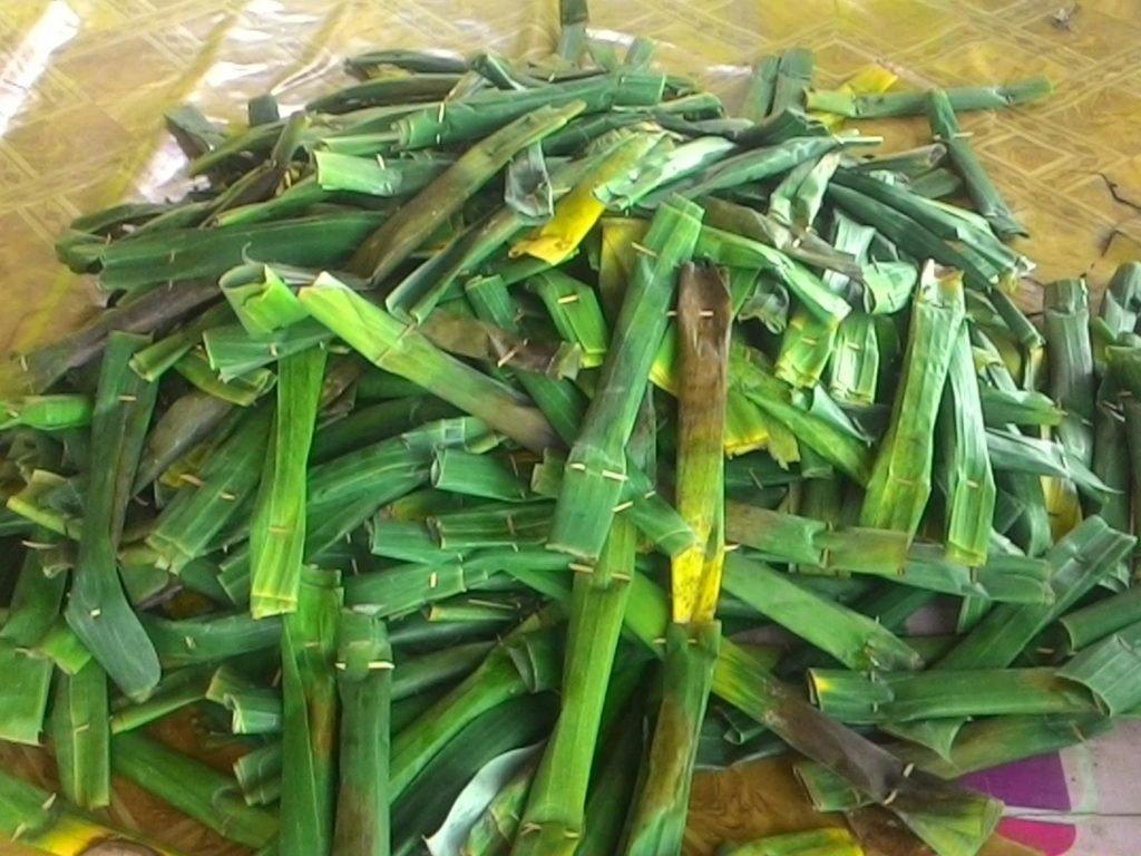 Pulot Hijau, makanan khas Bireun Aceh