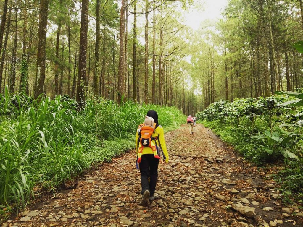 pendakian Bukit Budug Asu